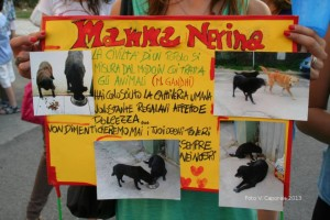 Nerina è stata uccisa da ignoti durante l'estate con un acido corrosivo, come accadde a Duca e Nala nel 2009