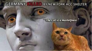 Appello affinché New York smetta di uccidere in massa e legalmente i suoi randagi