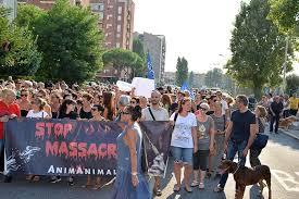 In memoria di Soopy e contro gli abusi sugli inermi a Livorno hanno manifestato in 400
