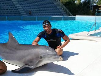 Zoomarine in vendita enpa basta prigionia e show - Bagno coi delfini ...