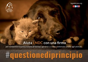 LNDC lancia una petizione per chiedere al Governo una drastica e equa riduzione dei prezzi dei farmaci a uso veterinario
