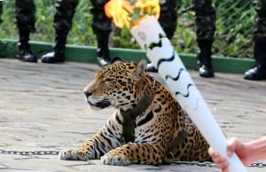 Juma, costretta in Brasile a guardare la torcia olimpica, uccisa per un tentativo di fuga