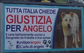 Condannati i quattro giovani assassini del meticcio Angelo, torturato e impiccato a Sangineto (Cosenza) per puro divertimento.