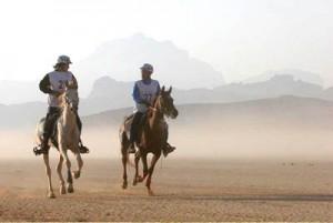 Neppure le gare di endurance, prove di fondo che vedono i cavalli impegnati su tracciati di decine, quando non centinaia di chilometri, sono state sospese in questo periodo di caldo eccezionale.