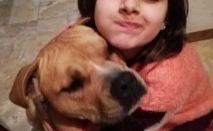 Tequi, la femmina di pitbull uccisa da un agente della polizia municipale di Montesilvano, in una fotografia pubblicata su Facebook dalla proprietaria, disperata.