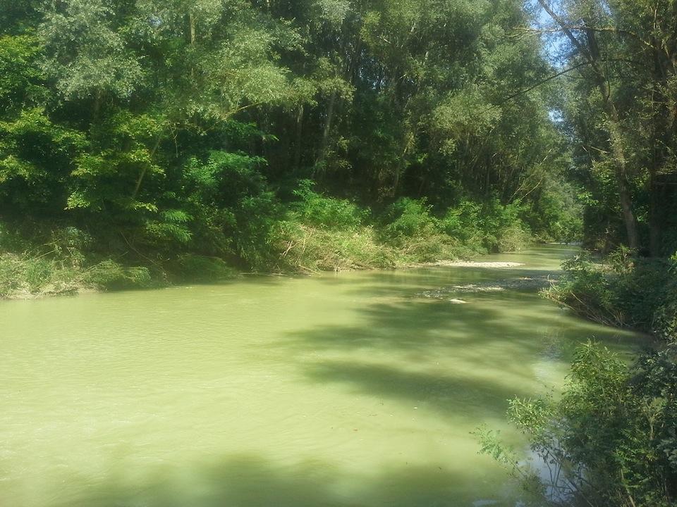 l'oasi verde di Guado Paradiso