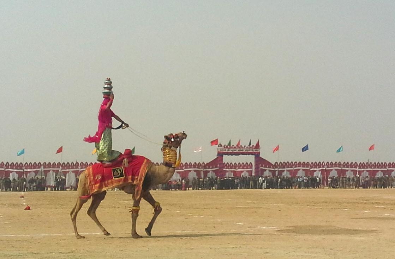 Camel Tetoo al Desert Festival di Jaisalmer,  photo copyright Cristina Favento