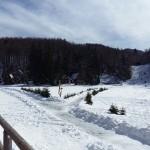 Il villaggio di Sviščiaki, sul Nevoso (Sneznik) a 1242 metri