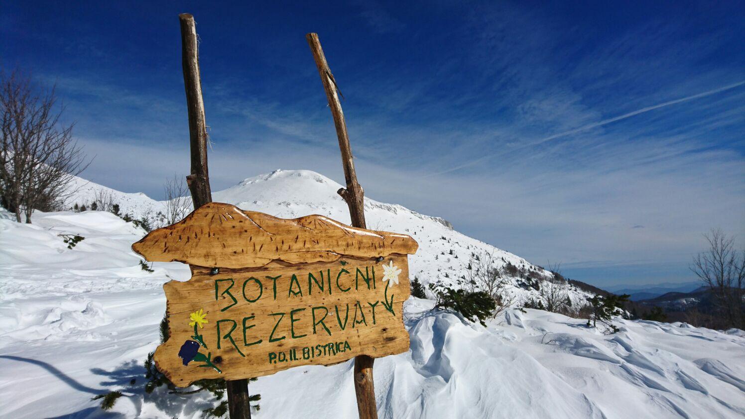 La riserva naturale Botanica del Nevoso. Foto di Riccardo Pizziga©