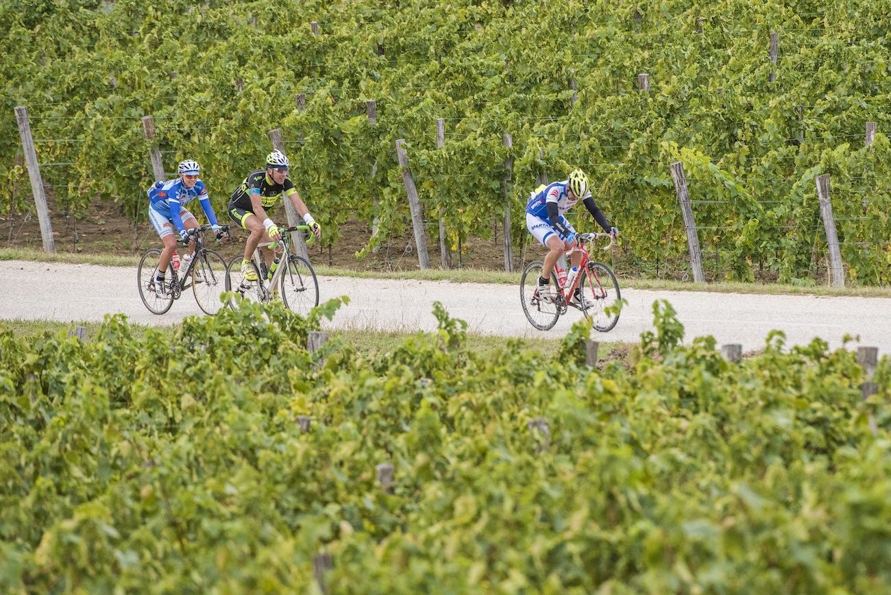 istria-granfondo-bici-ciclismo-croazia