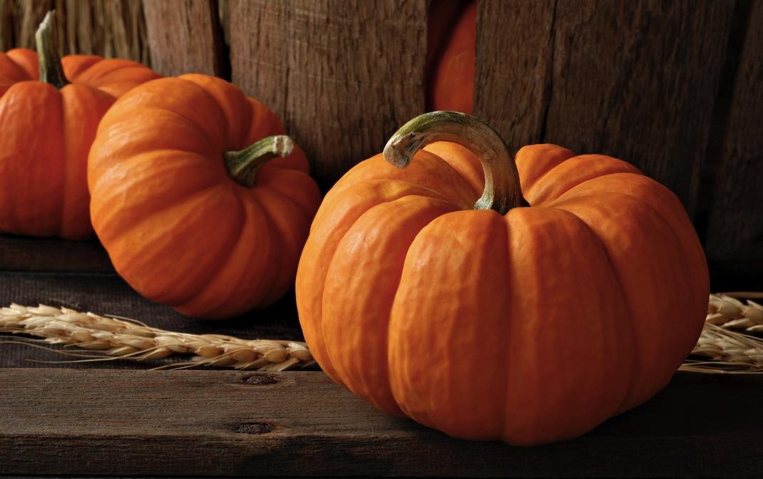 ricetta-di-halloween-zucca