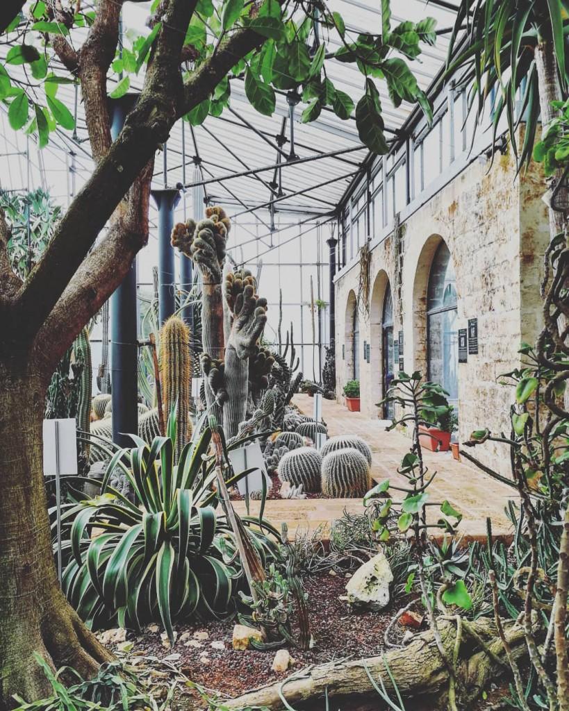 giardino la cutura foto di cristina favento©