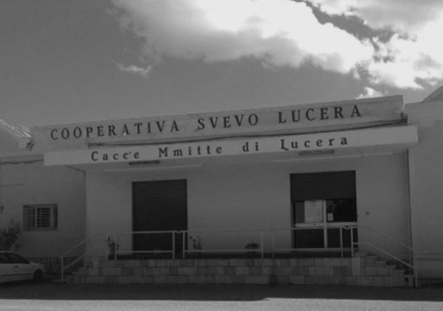 Cantina Svevo, Lucera (Foggia)