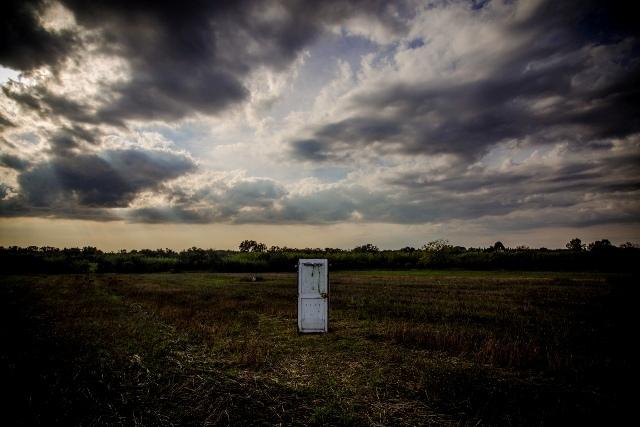 L'associazione Karadrà ha bonificato sei ettari di terreni abbandonati: secondo gli agronomi è l'incuria il terreno di coltura della xylella