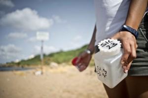 Campioni prelevati allo sbocco del depuratore di Marinella di Selinunte (TP)