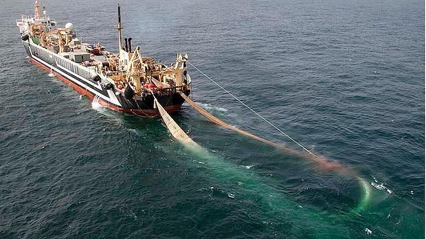 margiris-austriali-pesca