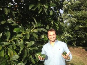 Avocato Passanisi1