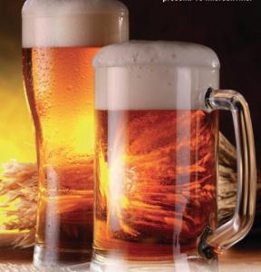 fveneto birra