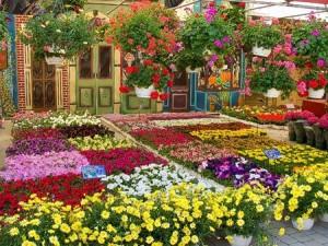 bancarella-fiori-300x225
