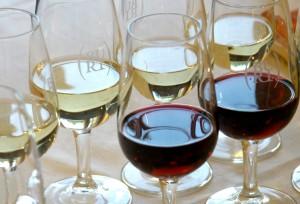 vino buttrio