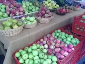 festa mela tolmezzo(1)