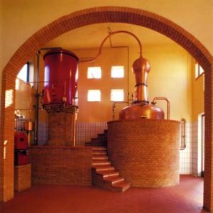 25                              Apparecchio di distillazione tipo charantaise