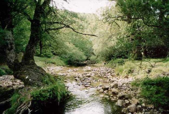 7 parco nazionale d'Abruzzo, Lazio e Molise, Italia