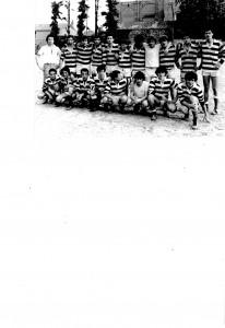 istituto Selvatico