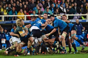 Italy South Africa Rugby