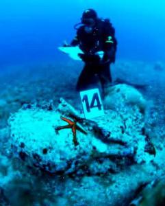 Isole Tremiti - Anfore romane I sec. a.c. recuperate dai fondali marini