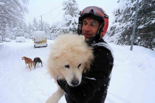 L'abbraccio tra un musher e il suo cane