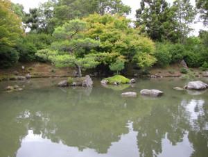 giardino giapp