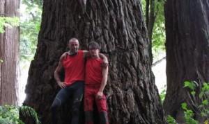 sequoia 7