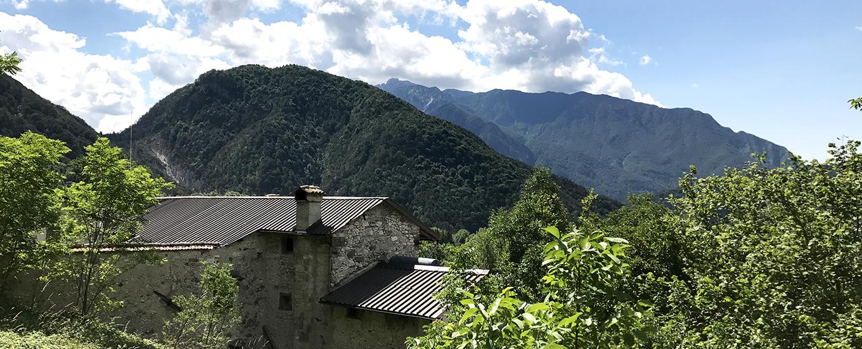 Bosco-Bandito-Moggessa-di-là-35