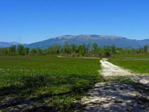 La campagna del fiume Piave