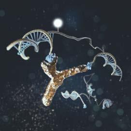 Sonda di DNA