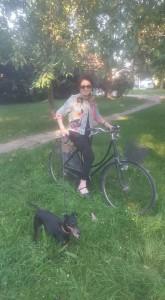 max e bici