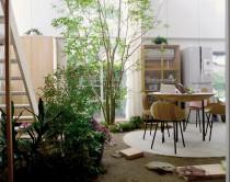 La casa con piante di ishigami casa design for La casa di stile dell artigiano progetta una storia