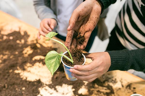 La cooperativa Cooption porta a Fa' la cosa giusta! uno spazio verde con erbe aromatiche e piante da frutto, cassoni per sperimentazioni libere di giardinaggio e una serie di laboratori  (foto Alessia Gatta)