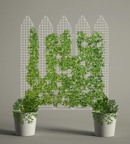 La natura entra in casa casa design - Separe per giardino ...