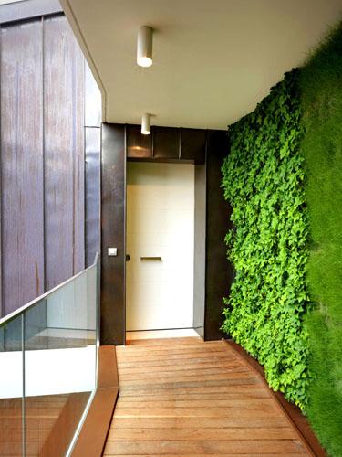 In corridoio sboccia la primavera. A parete, il giardino verticale realizzata da Verde Profilo. L'azienda monta una struttura di piante dotata di sistema di fertirrigazione, cioè che miscela acqua e fertilizzante. Le piante crescono e vanno potate<br><strong>www.verdeprofilo.com</strong>