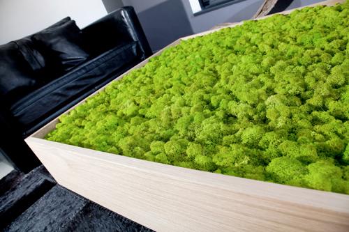 Dall'azienda francese Meamea il tavolo con lichene integrato. Tecnicamente si chiama Moss ed è un lichene raccolto nel nord Europa, trattato e inserito nei mobili oppure su pannelli decorativi. La pianta è viva, ma non cresce. Un'ottima idea per chi vuole il verde, ma non ha tempo per mantenerlo<br><strong>www.meamea.com</strong>