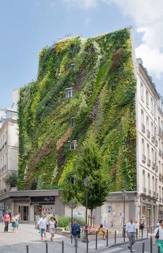 Un esempio di giardino verticale, realizzato nel cuore di Parigi da Patrick Blanc