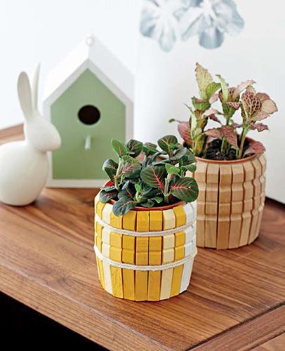 Vasetto per le piante