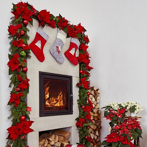 Ghirlanda con dei rami di abete arricchita da ornamenti natalizi colorati e dalle Poinsettie