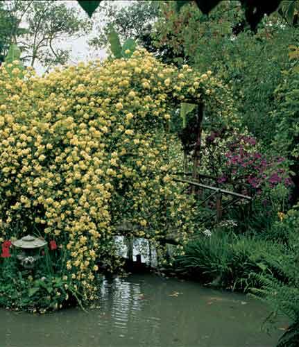 Giardino Botanico André Heller, dal 28 febbraio al 6 novembre, a Gardone Riviera, Brescia