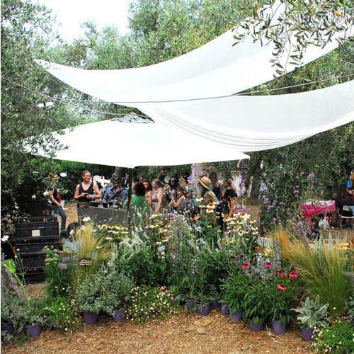 Festa delle erbe aromatiche officinali