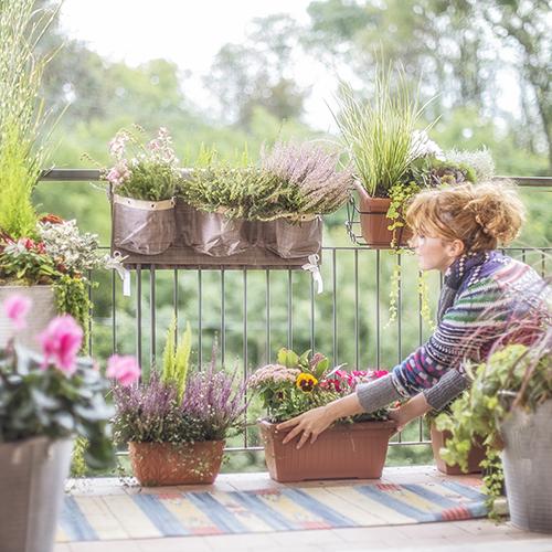 La manifestazione coinvolge più di 100 centri di giardinaggio sparsi in tutta Italia per sensibilizzare curiosi e appassionati di giardinaggio all'importanza dei mesi autunnali per mettere a dimora le piante e per la cura, la salute e la bellezza dei propri spazi verdi