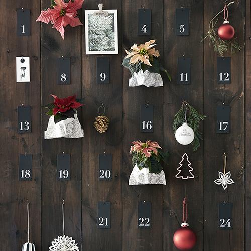 """Per un calendario dell'avvento """"verde"""": 24 piccole sorprese che scandiscono i 24 giorni che precedono il 25 dicembre"""