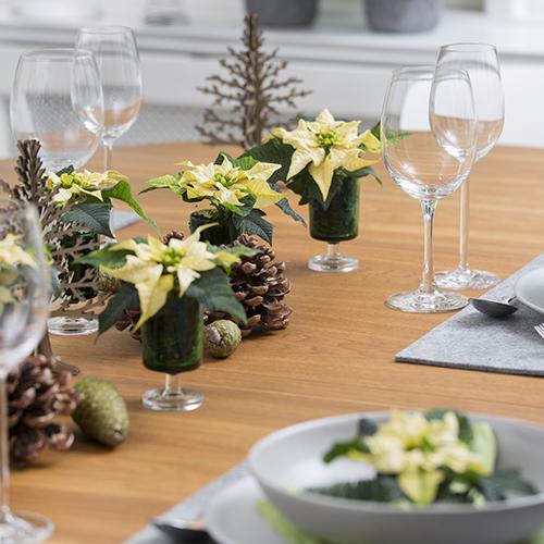 Anche a tavola da posizionare accanto ai piatti, come segnaposti, oppure come centrotavola
